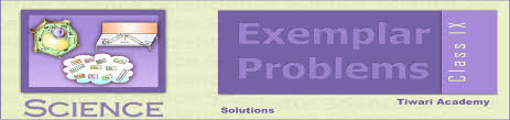 ncert exemplar problems solutions class 9 science pdf
