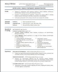 Senior Accountant Resume Summary Entry Level Accounting Resume Examples Resume Example And Free