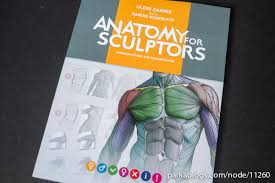 Best Anatomy And Physiology Textbook Best Anatomy Physiology Best Anatomy Textbook With Student Of Best