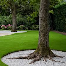 metal ring around tree search landscaping