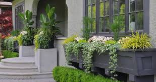 vancouver planter box ideas landscape traditional with window