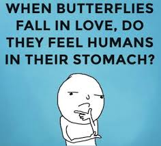 German Butterfly Meme - funny butterfly pictures collection 63