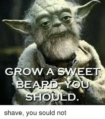 Beard Memes - 25 best memes about growing a beard growing a beard memes