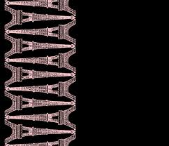 paris eiffel for you black and pink reverse border print
