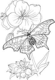 flower printable coloring sheets free printable flowers