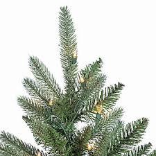 4 5 montana fir with 250 clear lights
