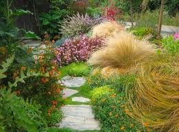 a colorful and low maintenance mediterranean path