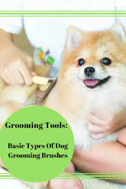 Types Of Dogs Grooming Tools Basic Types Of Dog Grooming Brushes Dog Notebook