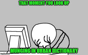 Memes Dictionary - computer guy facepalm meme imgflip