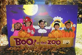 Brookfield Zoo Halloween by Say Boo Your Guide To This Year U0027s Halloween Fun Skokie Review