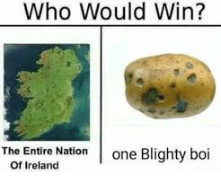 Ireland Memes - who would win the entire nation one blighty boi of ireland