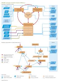 economics flowchart create a flowchart