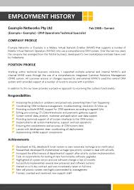 Comprehensive Resume Sample Format by Information Technology Resume Free Resume Example And Writing