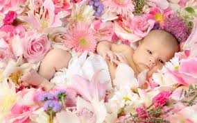 baby flowers how to flowers for a new baby anza amo florist