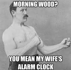 Morning Wood Meme - historic lols morning wood funny pictures history cheezburger