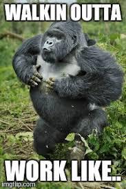 Ape Meme - ape shit happy imgflip