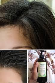 best 25 oily hair shampoo ideas on pinterest oily hair oily