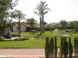 panoramio photo of jardin foya blanca summer 2008