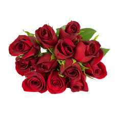 how much does a dozen roses cost h e b blooms dozen roses shop roses at heb