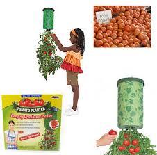 Upside Down Tomato Planter by Aliexpress Com Buy Upside Down Tomato Planter Patio Gardening