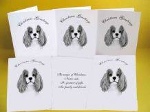cavalier king charles spaniel birthday card gift tag