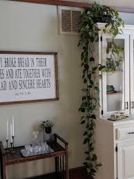 plants for on top of kitchen cabinets plant greeneryandgrace