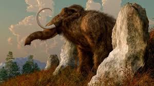 bring extinct species dead science aaas