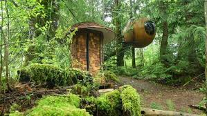 free spirit spheres in vancouver island s forest treehouse