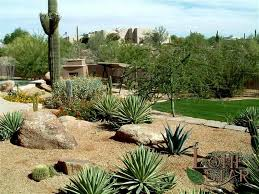 Down To Earth Landscaping by A Desert Landscape With Agaves And 0 Saguaro Looking Down To A