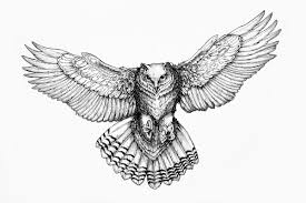 Patterned Flying Owl Drawing Illustration Owl Drawing Search Room Decor Owl