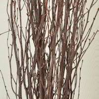 decorative dried branches artificial branches