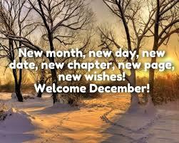 hello december acorda domzi