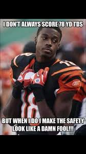 Cincinnati Bengals Memes - 23 best bengals fan memes images on pinterest american football
