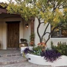 heat loving plants full shade plants for the desert phoenix home garden