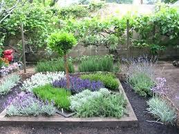 Herb Garden Layout Ideas Perennial Herb Garden Layout Ideas Basil Thyme Garden Wok Reseda