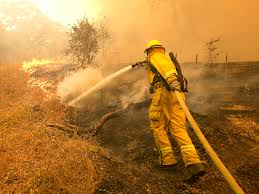 Wildfire Social Media App by Santa Rosa Fire How Fire Is Affecting The Marijuana Industry