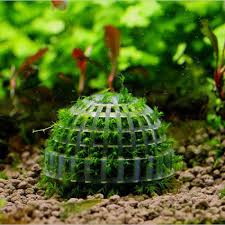 How To Aquascape A Planted Tank Aliexpress Com Buy Mineral Stone Suspended Float Moss Ball Fish