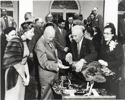 thanksgiving president eisenhower feeds a turkey white house