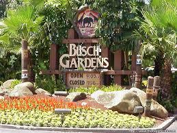 bush gardens busch gardens sign mojo s ta