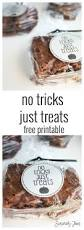 25 best tom u0026 jerry images on pinterest halloween crafts
