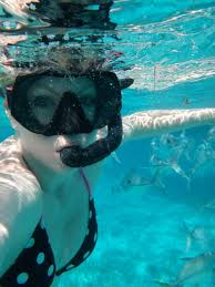 North Dakota snorkeling images Snorkeling with sharks traveling out loud jpg