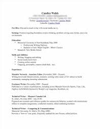 Resume Samples Editor by Finished Resume Examples Sample Resume123