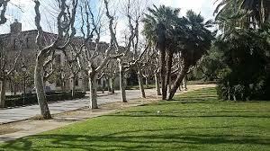 an alley of different types of trees picture of parc de la