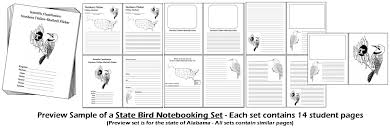 chsh teach state birds notebooking pages