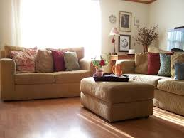 Ideas To Decorate A Living Room Decorations Ideas For Living Room Inspiring Worthy Lovable Decor