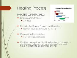 understanding and managing the healing process primary and