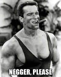 Schwarzenegger Meme - negger please good guy arnold schwarzenegger meme generator