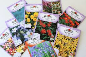 seed packets start with a seed series part 3 buying seeds and understanding