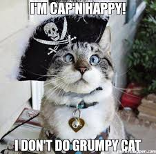 Happy Cat Meme - i m cap n happy i don t do grumpy cat meme spangles 8561