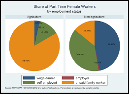 Formal Credit And Informal Credit a snapshot of the part time workers in turkey by dr burcu